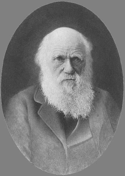 Tooth Pain Relief >> Charles Robert Darwin ( 1809 - 1873 )
