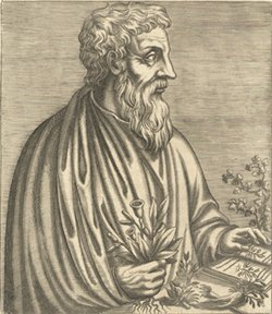 picture of Dioscorides